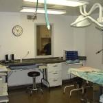 Our Surgery Suite.